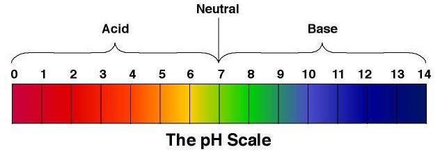 ph-scasle